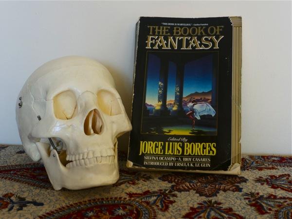 Skull book