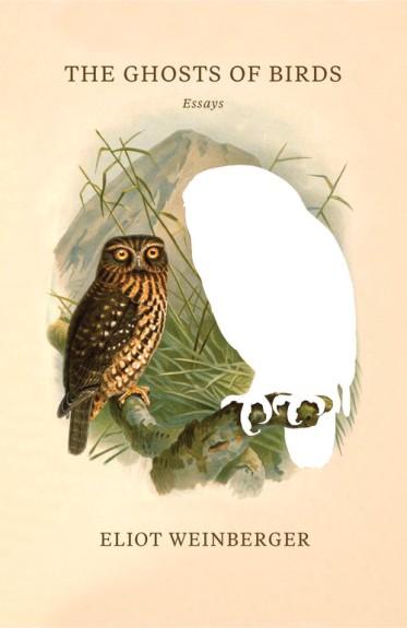 Weinberger ghosts of birds