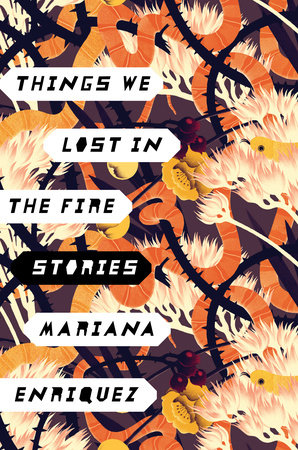Things We Lost in the Fire, Mariana Enriquez